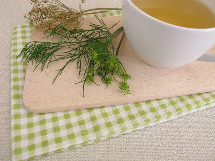 Chá de folhas de Endro – Entenda os benefícios para a saúde