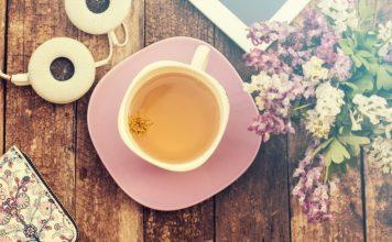 Quebra-pedra – O chá amigo dos rins