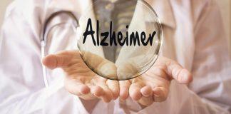 Cardápio eficaz na prevenção do Alzheimer