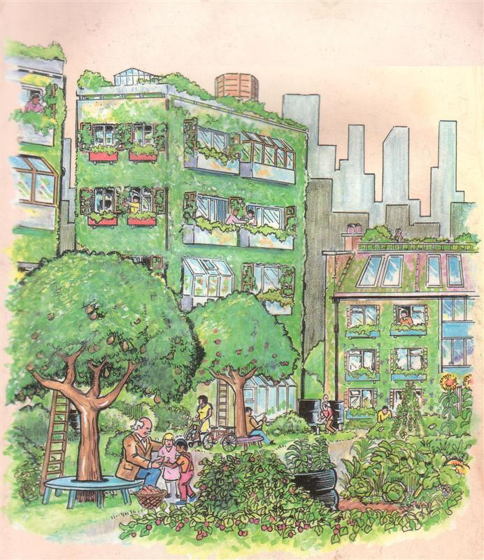 Immagine: https://it.pinterest.com/UPISF/urban-permaculture/