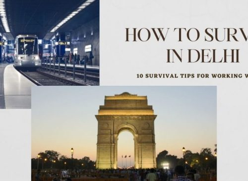 How to Survive in Delhi