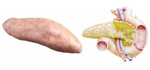 patata-dolce-pancreas