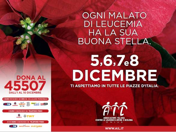 Stelle di natale ail in piazza dal 5 all 39 8 dicembre for Stelle di natale ail 2016