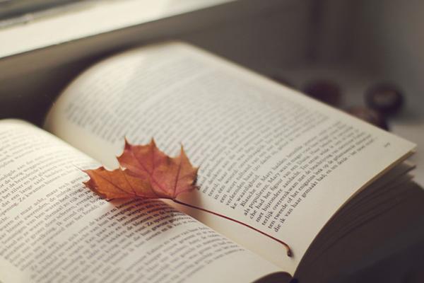 uscite libri Novembre