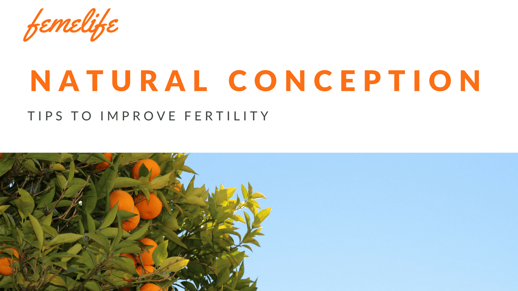 Tips To Improve Fertility