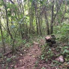 Femerj publica documento sobre Boas Práticas de Sinalização em Trilha