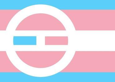 trans military ban