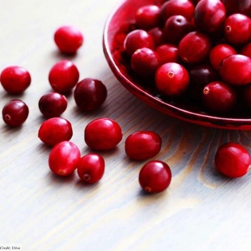 UTI natural cranberry pills