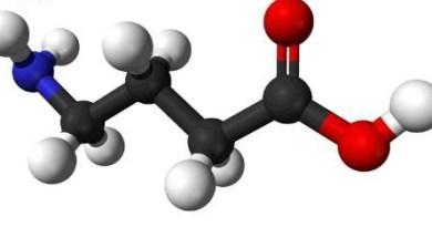 aciduria acido gamma