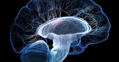 trastorno neurologico