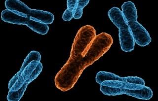 anomalias cromosomicas