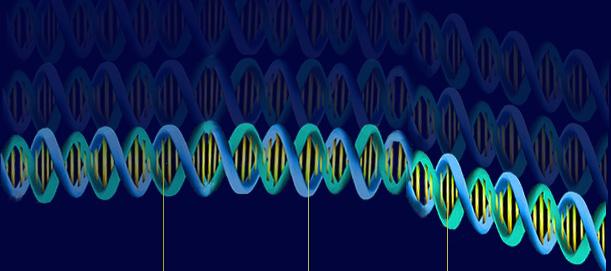 mioglobinuria recurrente genética
