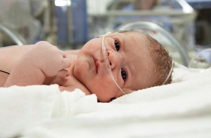 Colestasis intrahepática neonatal por deficiencia de citrina