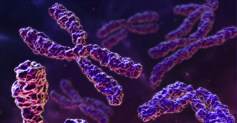 Síndrome de alfa talasemia-discapacidad intelectual ligada al cromosoma 16