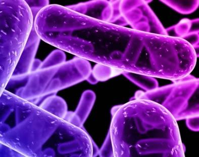 Susceptibilidad mendeliana a enfermedades micobacterianas por deficiencia completa del IFNgammaR1