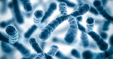 Trastorno inmunoneurológico ligado al X