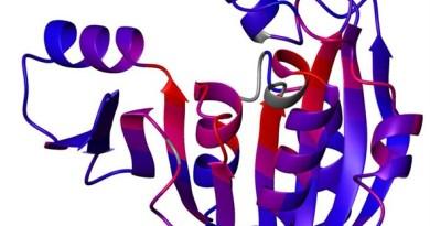 Enfermedad de almacenamiento de glucógeno por deficiencia de fosforilasa quinasa muscular