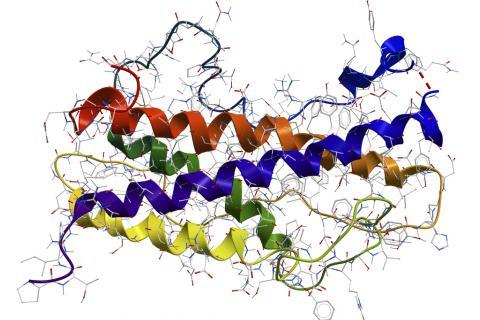 Hipogonadismo - prolapso de válvula mitral - deficiencia intelectual