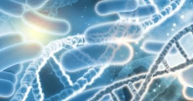 Inmunodeficiencia por deficiencia selectiva de anticuerpos anti-polisacáridos