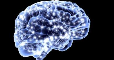 Síndrome de leucoencefalopatía con afectación del tronco del encéfalo y a la médula espinal - lactato elevado