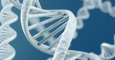 Deficiencia de holocarboxilasa sintetasa