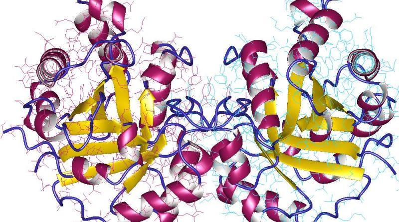 Deficiencia de triosa fosfato-isomerasa