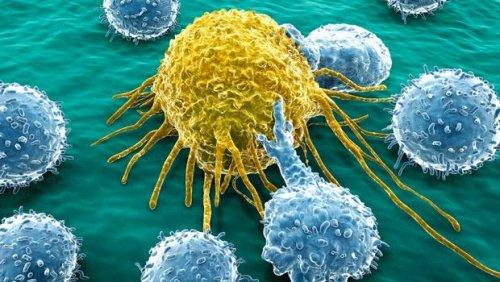 Síndromes genéticos polimalformativos con aumento del riesgo de desarrollar cáncer