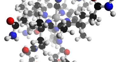 Acidemia metilmalónica sensible a la vitamina B12