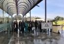 Enfermedades raras presentes en uno de cada dos mil mexicanos