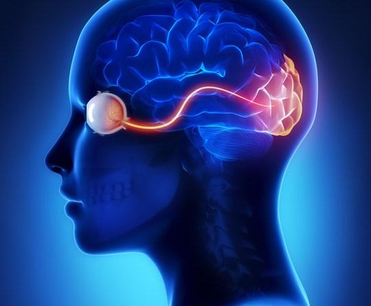 Linfoma oculocerebral primario