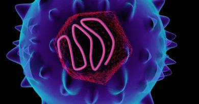 La compañía obtiene la designación de medicamento huérfano para la hepatitis autoinmune de la FDA