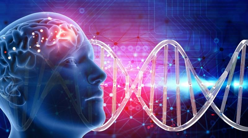 La inhibición de PTEN en glioblastomas aumenta su sensibilidad a la radiación