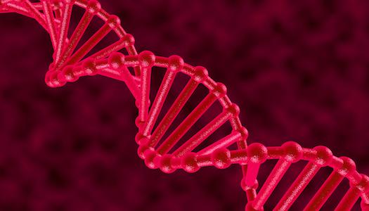 Clúster, tendencias genéticas observadas en enfermedades autoinmunes