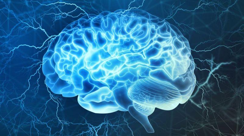 La información sobre el síndrome de MICPCH raro podría ayudar con el autismo y la epilepsia