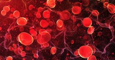 Opinión positiva del CHMP para Revlimid e Imnovid en mieloma múltiple