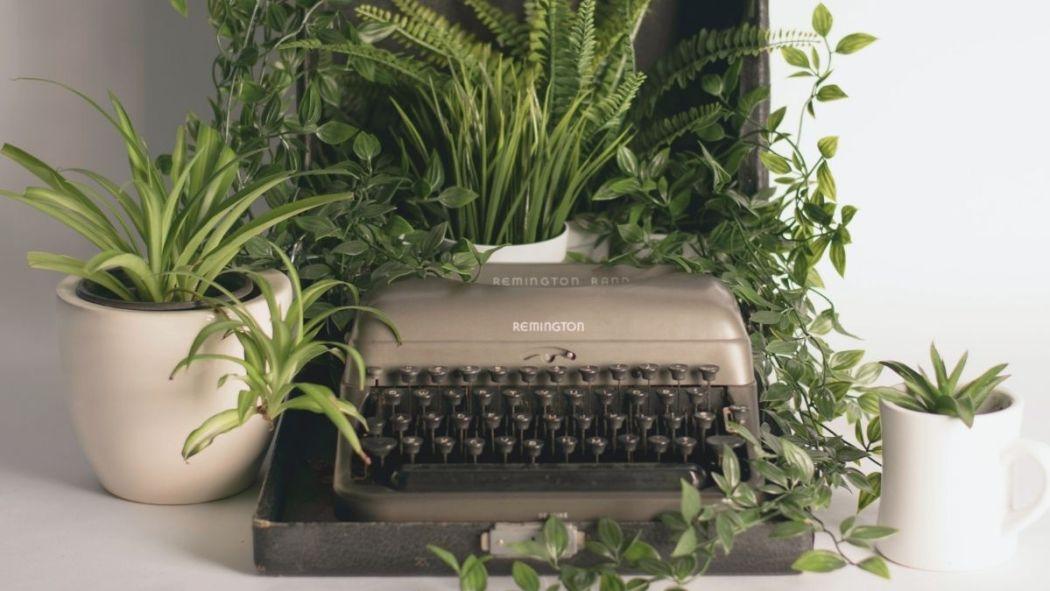 het ideale home office staat vol planten