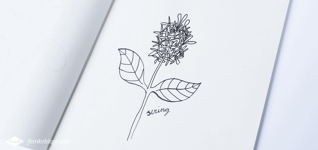 31 Dagen bloemen | Sering eindresultaat