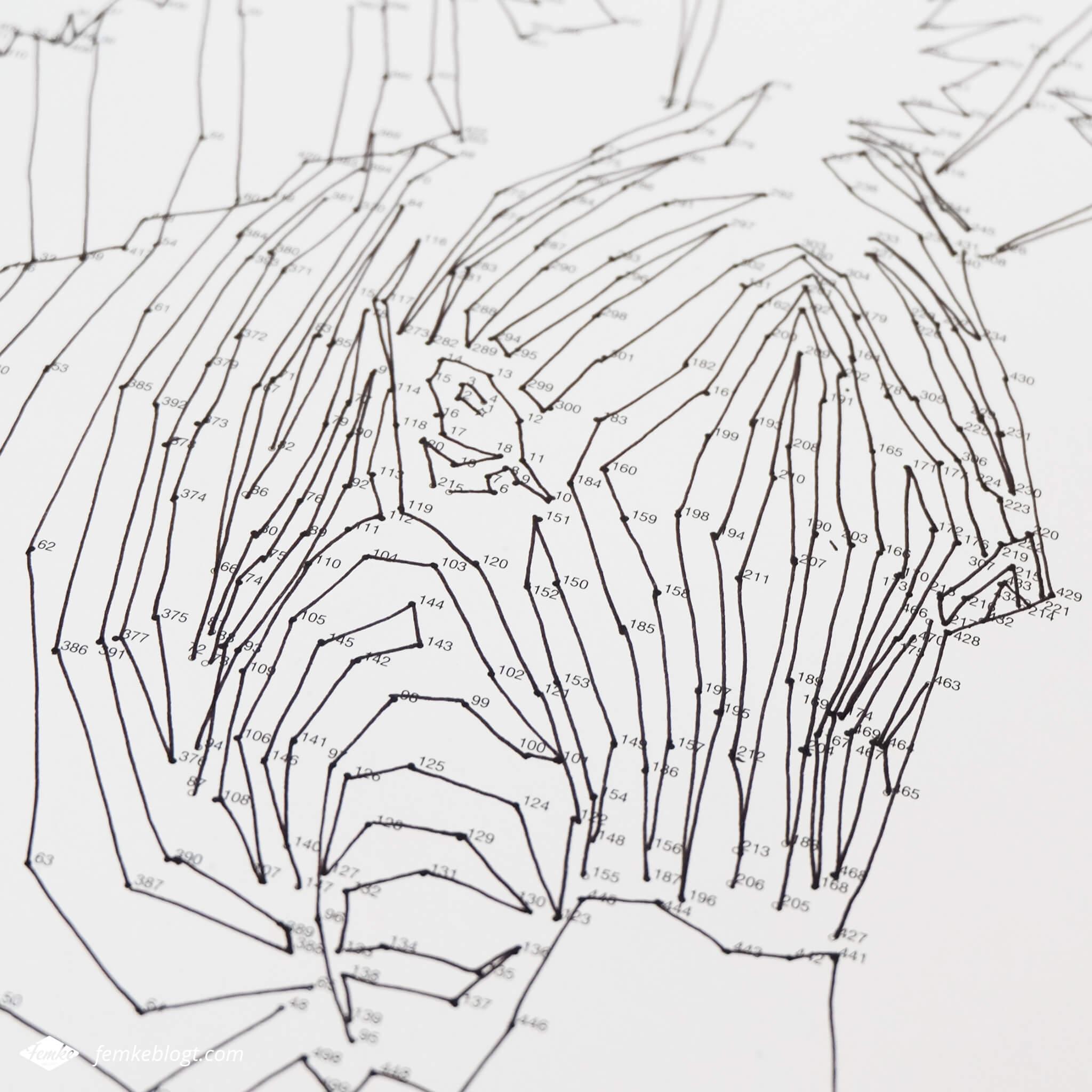 Dot-to-dot puzzelboek   Verbind de puntjes en maak een mooie tekening zoals deze zebra.
