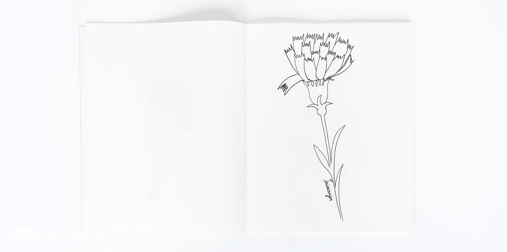 31 Dagen bloemen #8   In deel acht gaan we de tuinanjer tekenen.