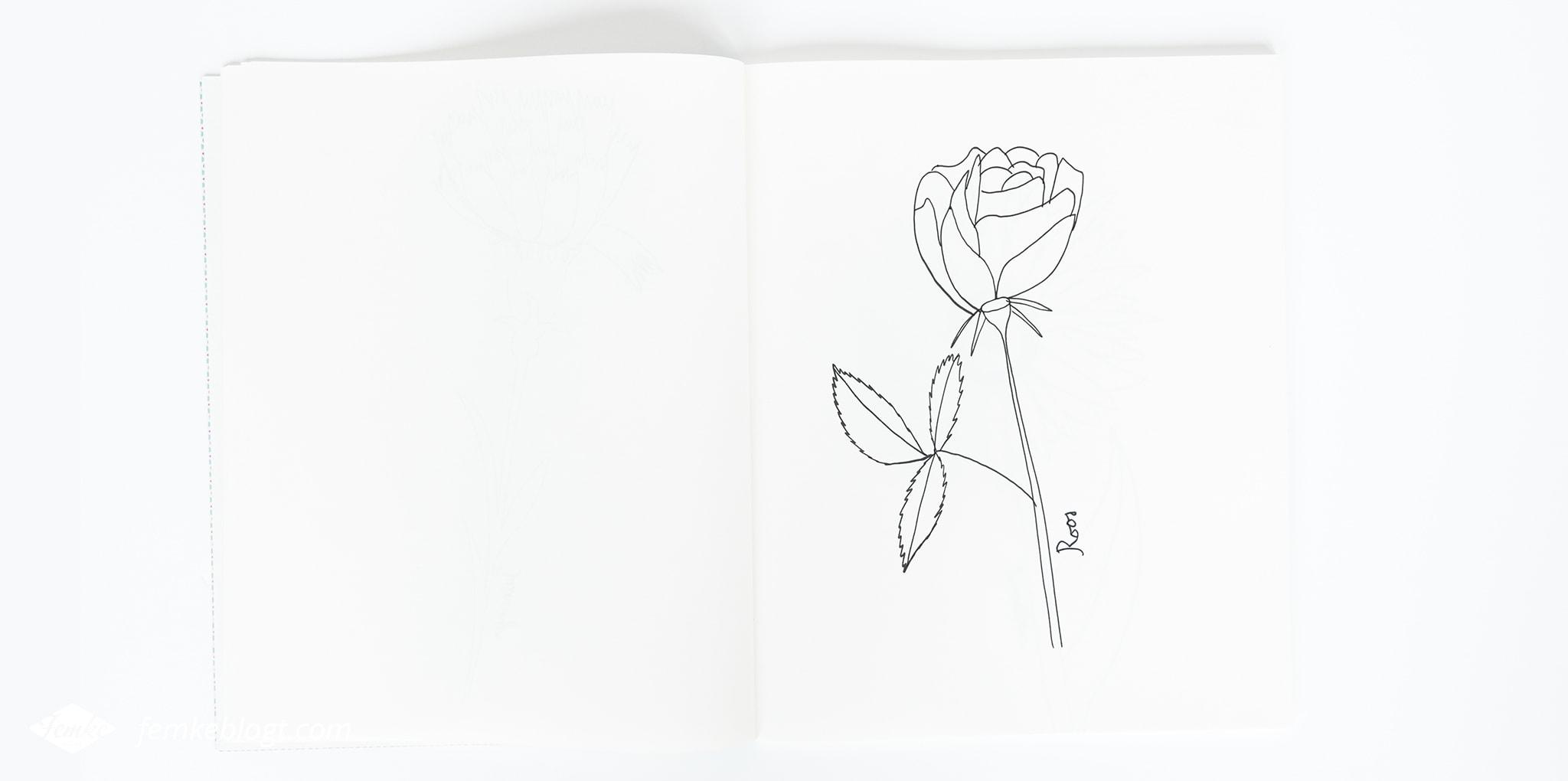 31 Dagen bloemen #9 | Roos tekenen
