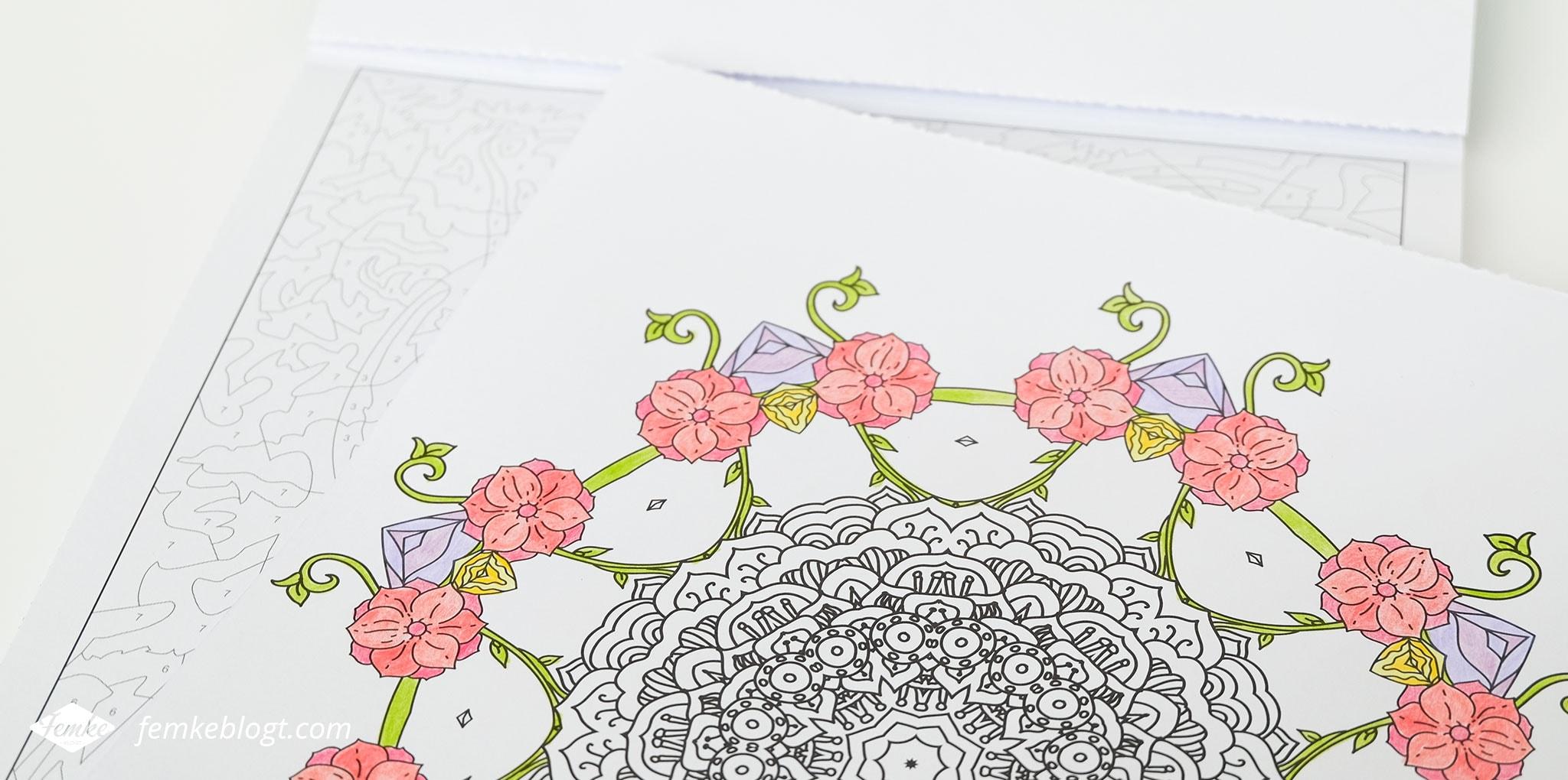 Denksport collectie Kleur!   Een kleurblok vol met mandala's, kleuren op nummer, patronen en gevarieerde kleurplaten van makkelijk tot moeilijk