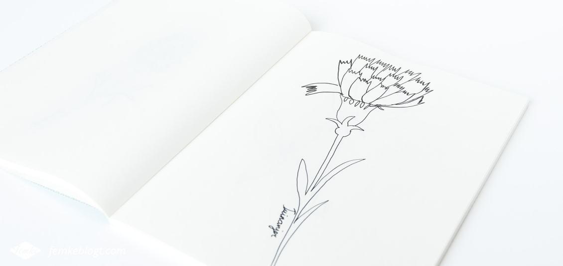 31 Dagen bloemen #8 | In deel acht gaan we de tuinanjer tekenen.