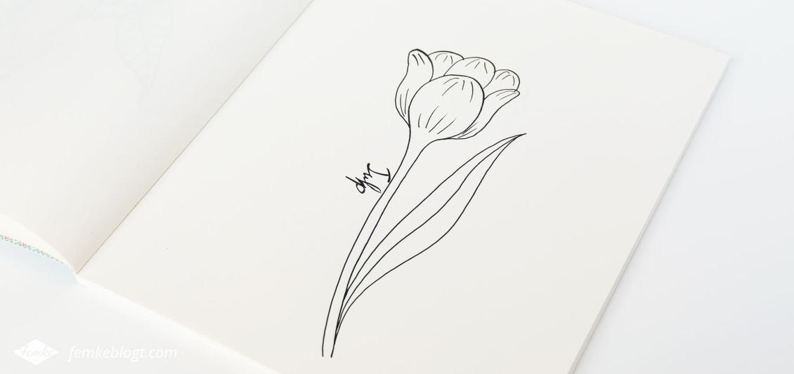 31 Dagen bloemen #5 | In deel 5 van de 31 Dagen bloemen serie gaan we de tulp tekenen