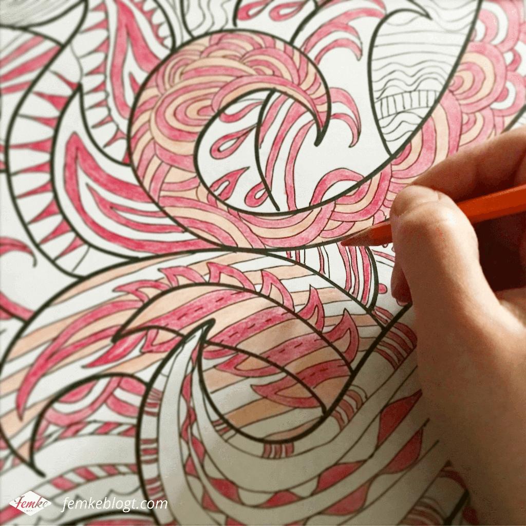 Maandoverzicht februari | Kleuren