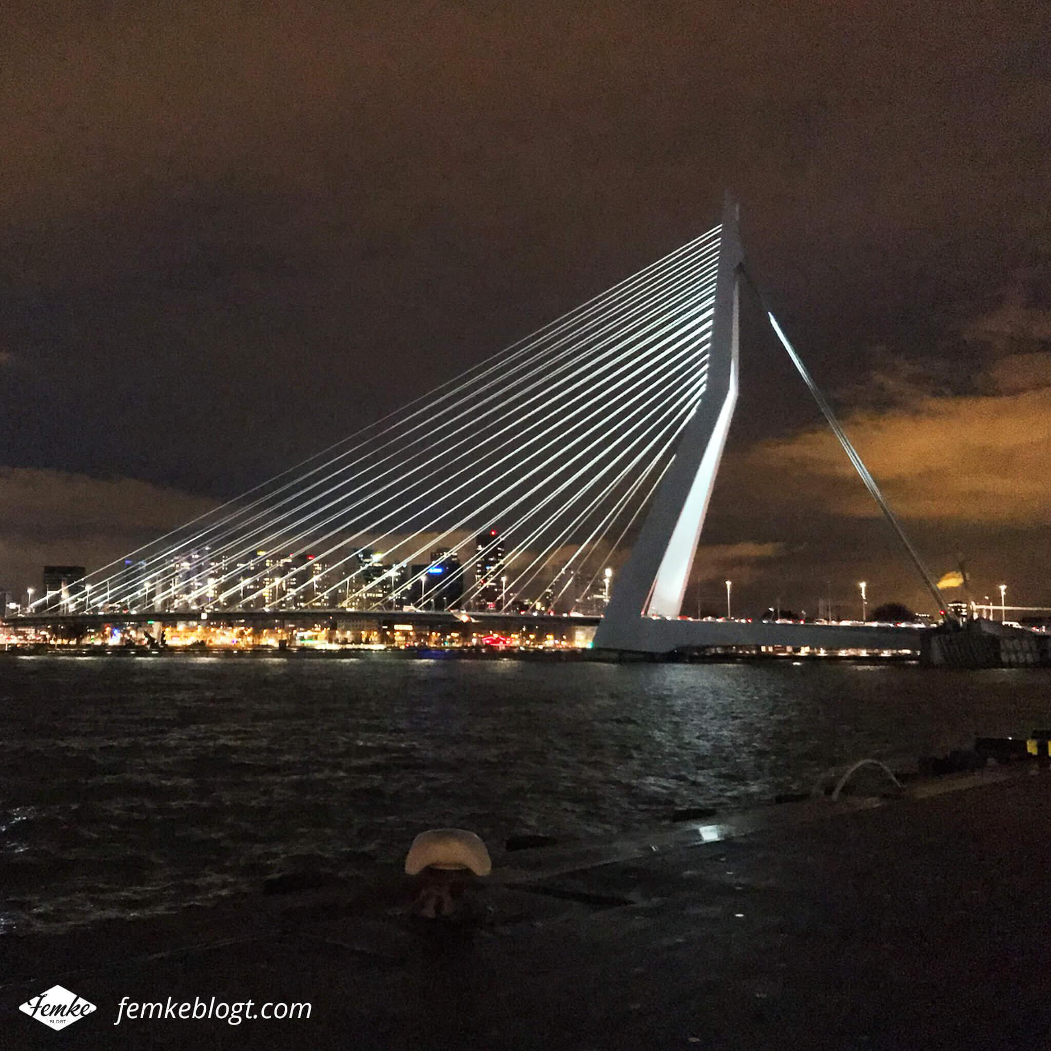 Maandoverzicht november | Erasmusbrug Rotterdam