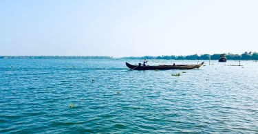 Top 5 experiences in Kumarakom