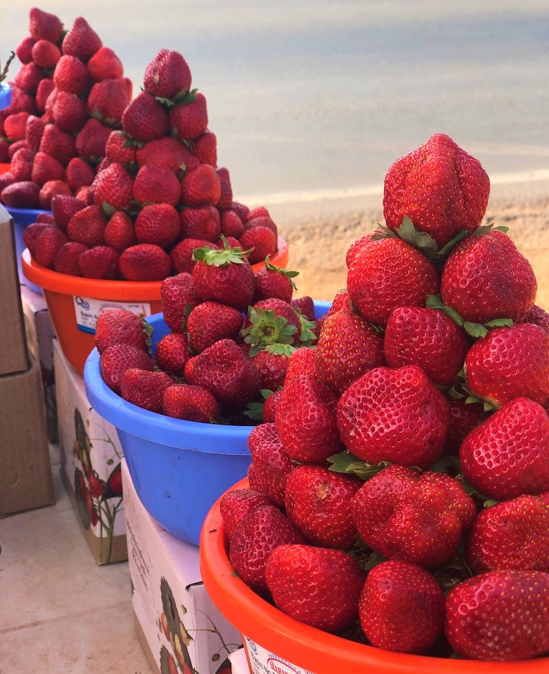 Mahabaleshwar Travel Guide - Strawberry