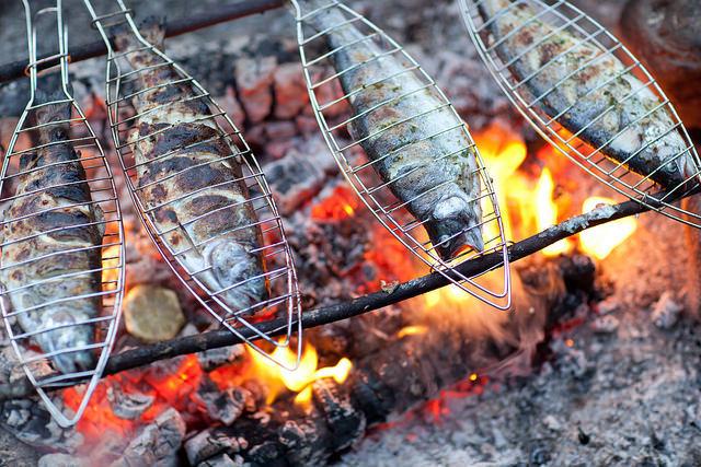Lamu Fish