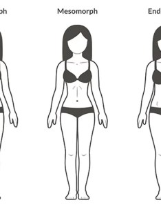 Female body types ectomorph also day healthy weight gain meal plan for women  femniqe rh