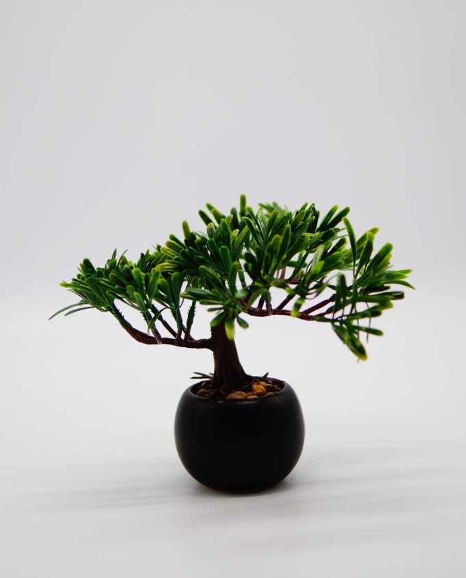 An artificial Bonsai tree in ceramic pot with pebbles to decorate your space, for indoors.